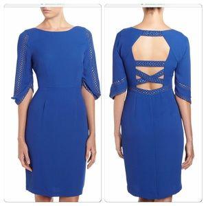 NWT, BCBG Maxazria Stunning Blue Studded Dress!